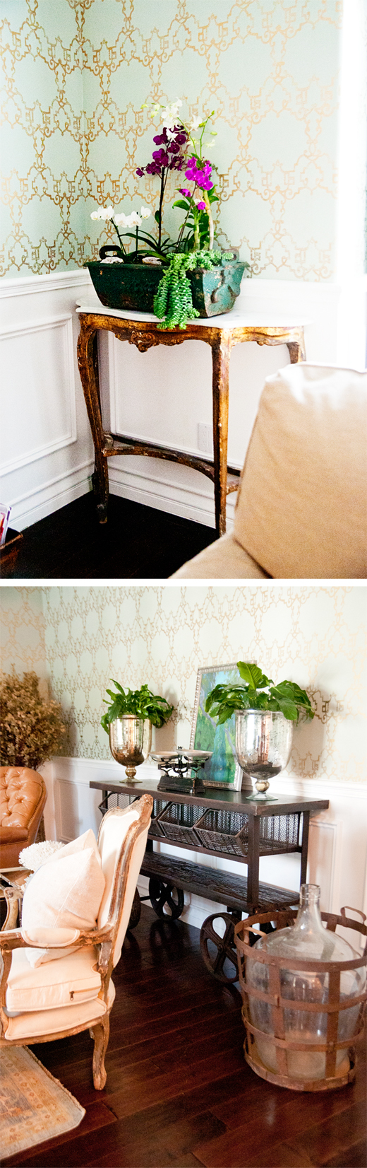 Keep a room alive with Orchids + Plants | D.L. Rhein