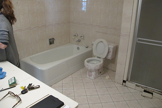 BEFORE | MASTER BATH TUB AND SHOWER