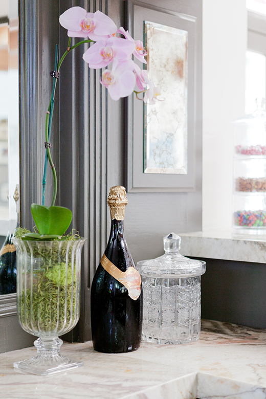 ORCHIDS AND CHAMPAGNE, YES PLEASE! | D.L. RHEIN