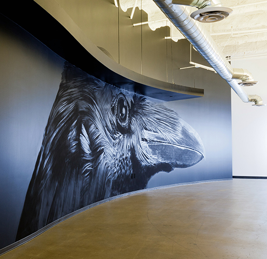 Crow Mural by Onur Dinc | Design by D.L. Rhein | Photography by Amy Bartlam